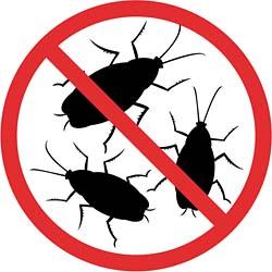 no_cockroaches